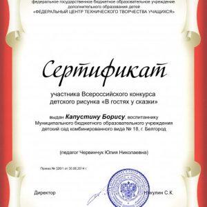 1-264-2014_Sertifikat( m)_Kapustin Boris_500x711