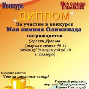 Sorokin YAroslav_500x708